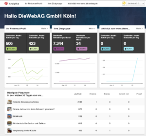 generelle Daten - Pinterest Account Analytics